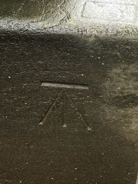 赤坂氷川神社の几号水準点