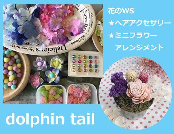 dolphintail花811