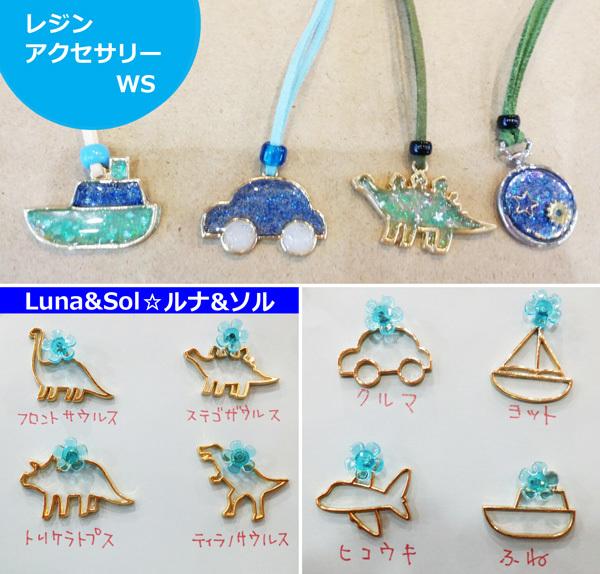 Lunasol811.jpg