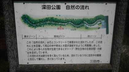 fukata_bio2.jpg
