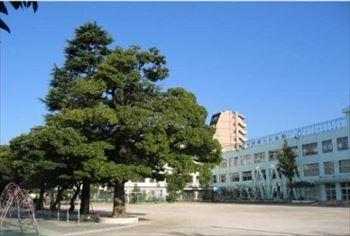 大井第一小学校_R