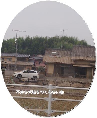 20180711 (3)