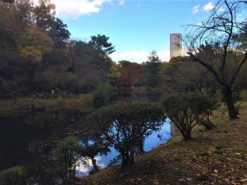 大池とシティタワー国分寺ザ・ツイン