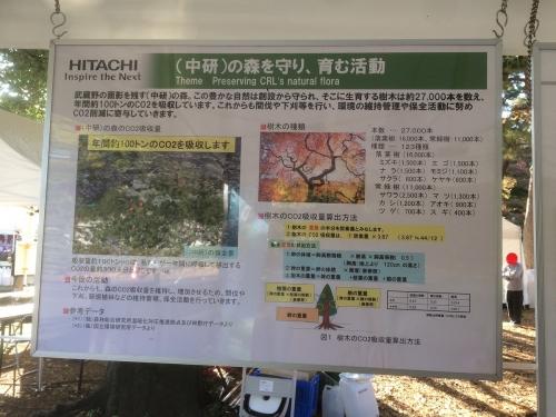 (中研)の森を守り 育む活動