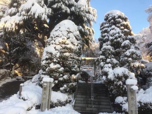 1月23日朝 大雪の貫井神社