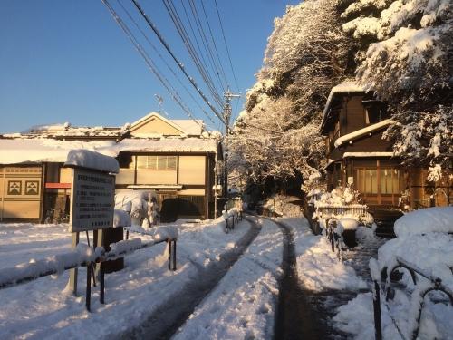 1月23日朝 大雪の貫井神社前の道