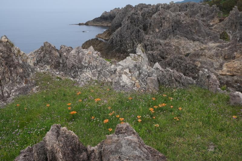佐渡尖閣湾