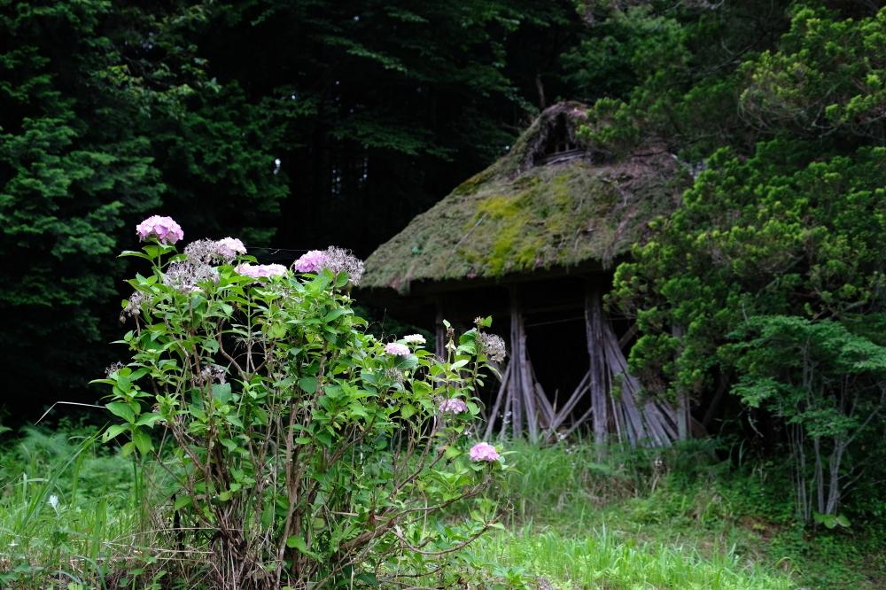 藁ぶき小屋