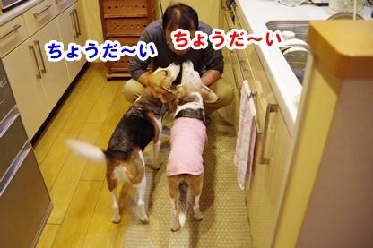 キッチン 3