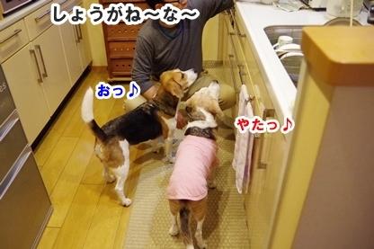 キッチン 4