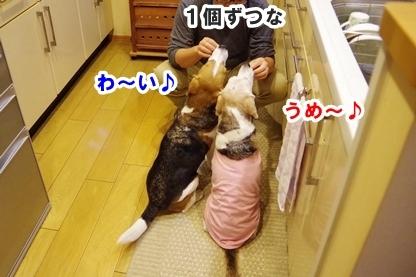 キッチン 5