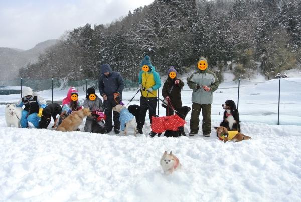 2014高山