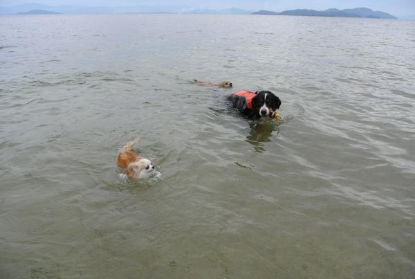 2014琵琶湖1