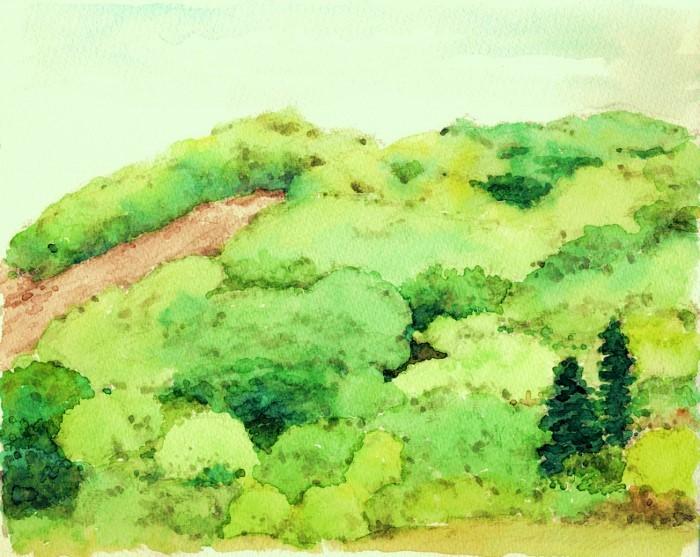 猪名川の新緑 (700x557)
