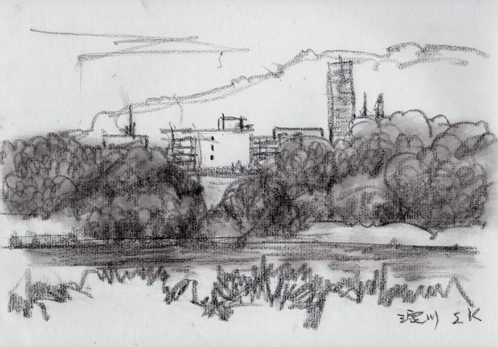 淀川の河川敷にて (700x489)