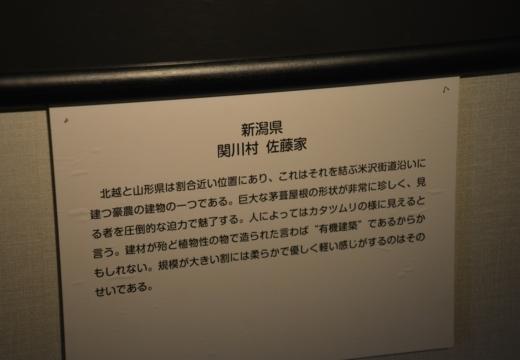 180427-142951-中山道 201804(239)_R