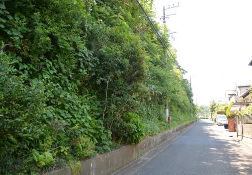 180522-130456-横須賀STORY 鷹取山異径 (126)_R