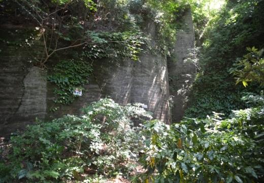 180522-131016-横須賀STORY 鷹取山異径 (148)_R