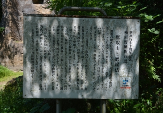180522-132852-横須賀STORY 鷹取山異径 (281)_R