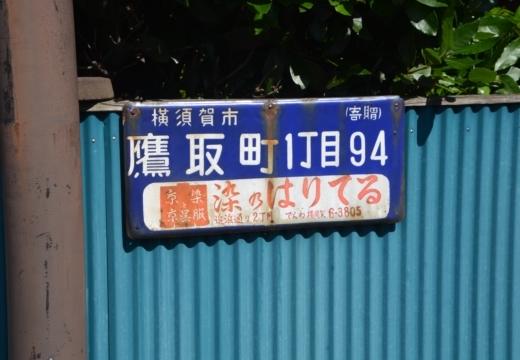 180522-142418-横須賀STORY 鷹取山異径 (395)_R