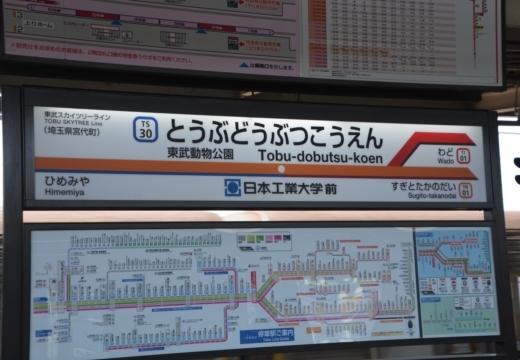 180511-094256-杉戸宿201811 (224)_R