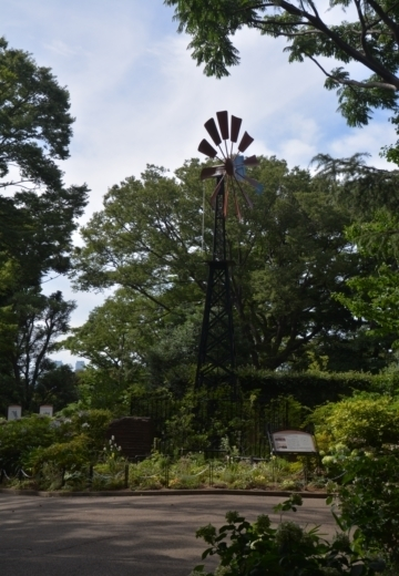 180703-145633-横浜 インフラ 201807 (220)_R
