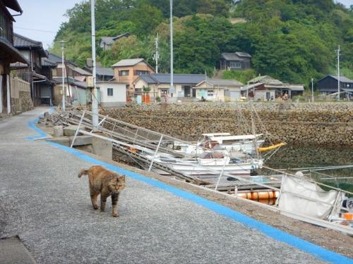 20180517青島 (16)