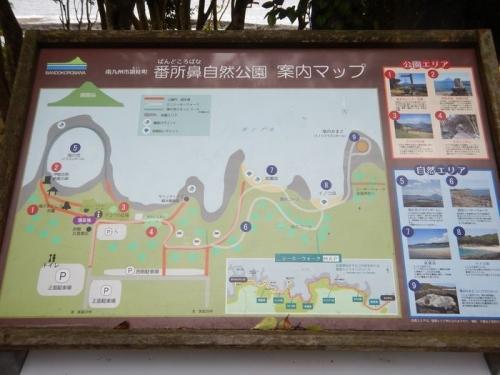 20180603 枕崎 (7)