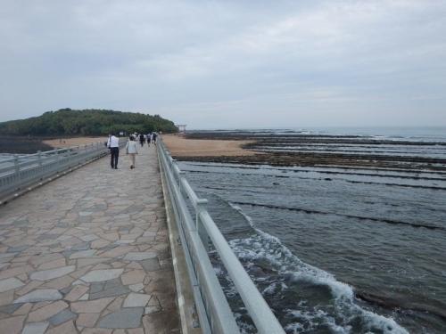 20180605 鹿児島宮崎 (5)