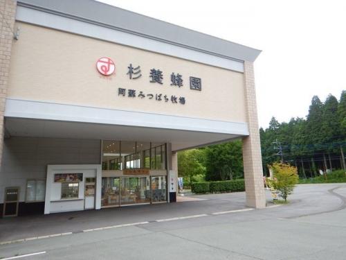 20180607阿蘇下山後 (5)