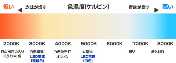 shikiondo01.jpg