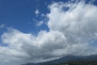 6月大山の青白、アップ