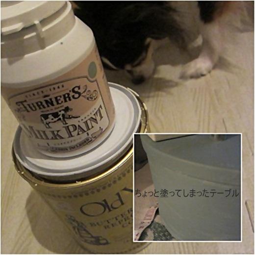 cats_20180711212904a28.jpg