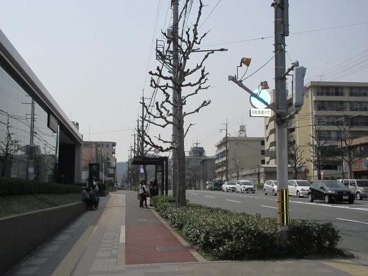 555-34.jpg