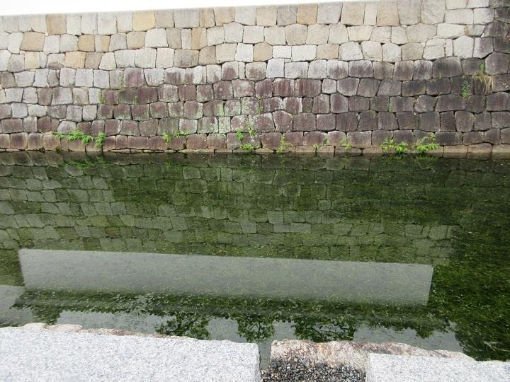 568-7.jpg