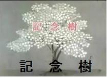2018年12月会報記念樹