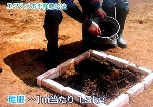 20110515_edamame_05.jpg