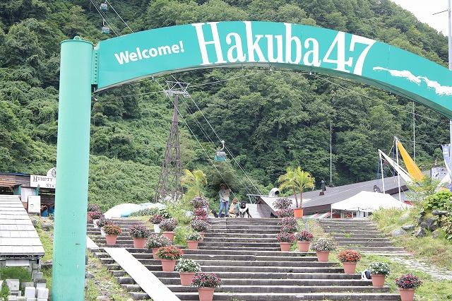 HAKUBA47.jpg