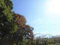 二日目の秋晴れ