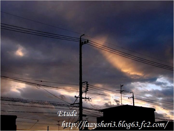 20070716-5.jpg