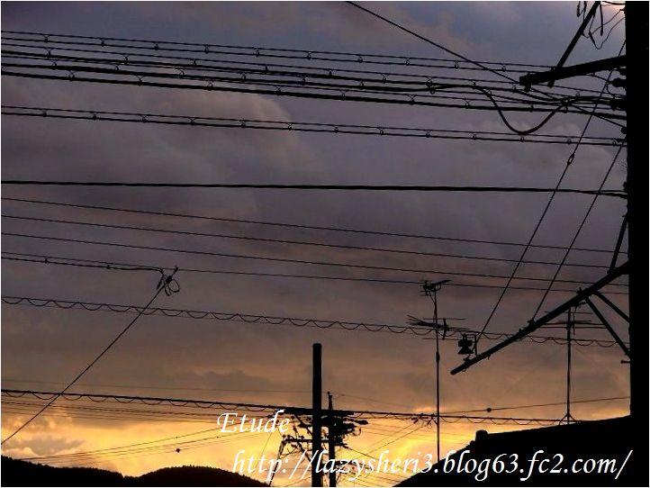 20070716-8.jpg