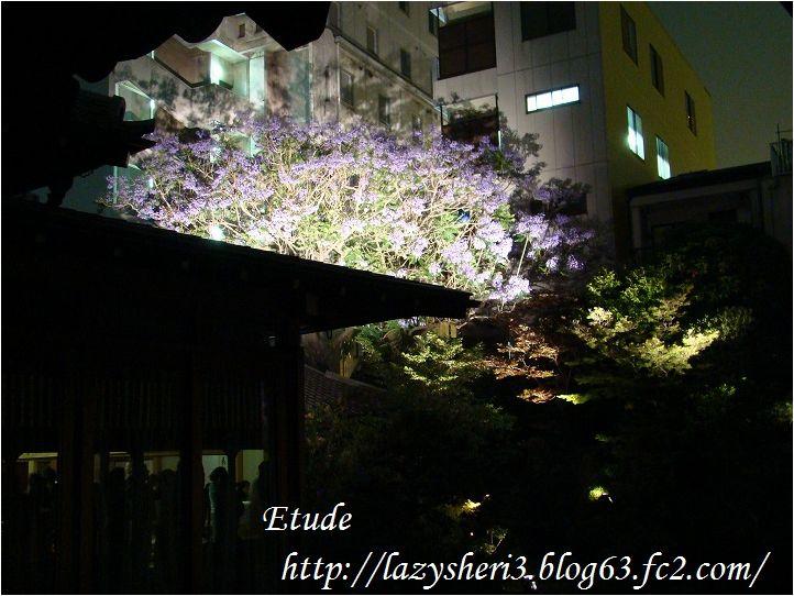 20080614-1.jpg