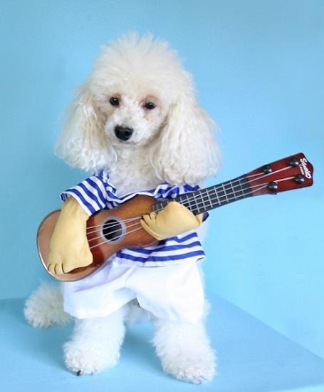 ジュリアンくん ギター弾き語り