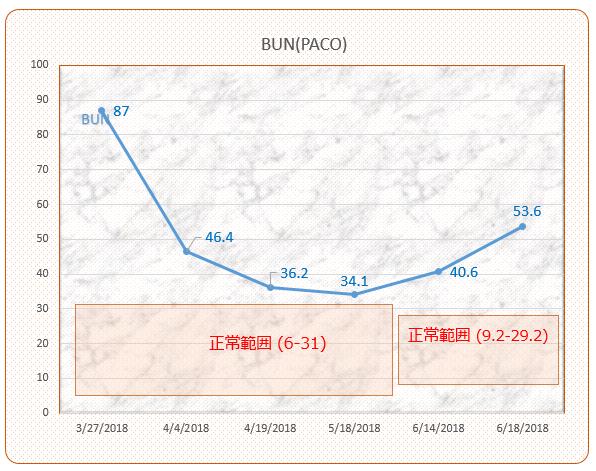 パコ検査結果推移(BUN)#5 #6 201806