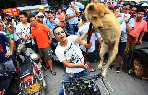 生きた犬の首根っこを掴んで、ドヤ顔で高々と持ち上げる中国人。