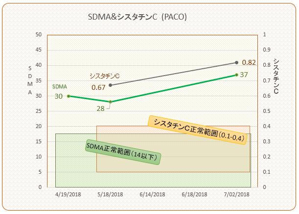 パコ検査結果推移(SDMAシスタチンC)#5 201807