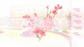 FLOWERS 夏篇