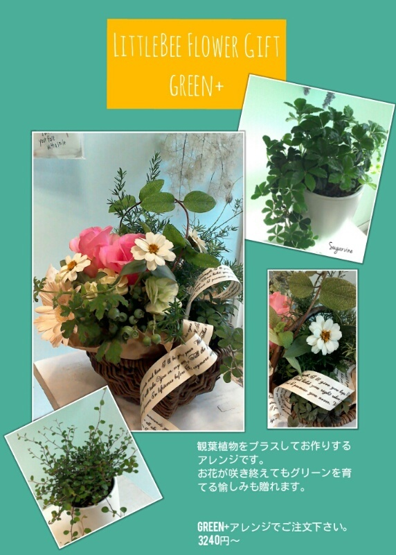green+アレンジ
