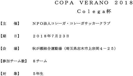 7.23(月)5年、COAP VERANO 大会要項①