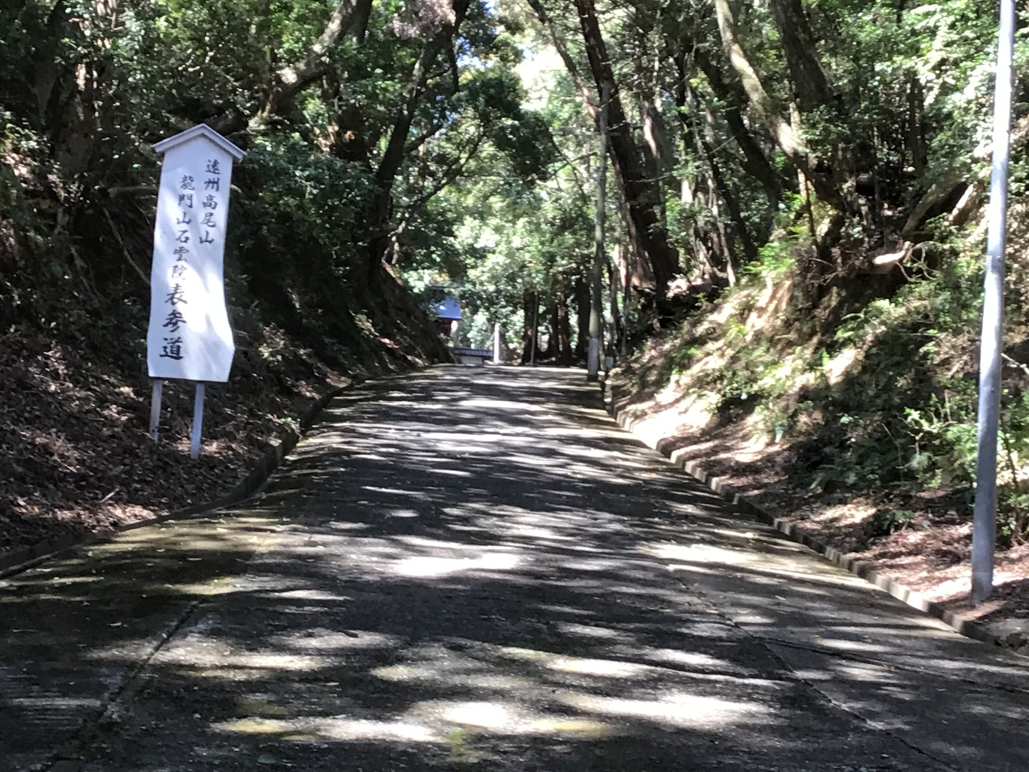 2019-haruhigan-8.jpg